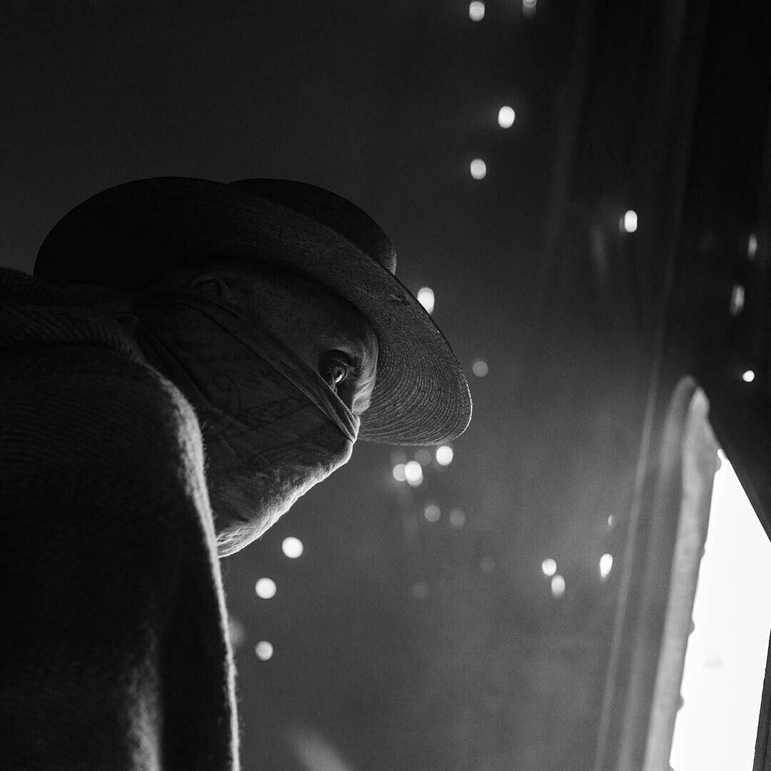 Размещен 1-ый трейлер нового фильма оРосомахе
